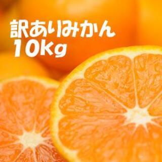 くらだしみかん☆混合10kg訳あり品 和歌山県から農園直送!(フルーツ)
