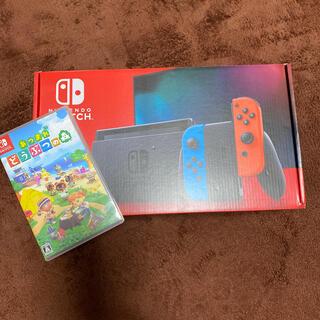 Nintendo Switch - switch 任天堂 あつまれどうぶつの森