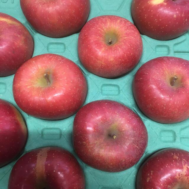 ⑤信州りんご サンふじ 家庭向け 食品/飲料/酒の食品(フルーツ)の商品写真