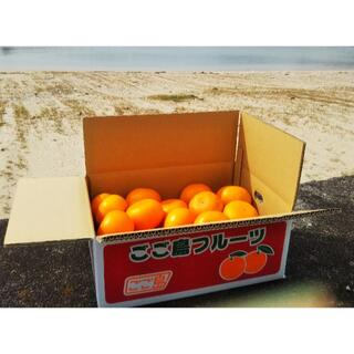 愛媛県産せとか(柑橘類)ワケアリ5kg箱(2021年3月20日ごろまで出品)(フルーツ)