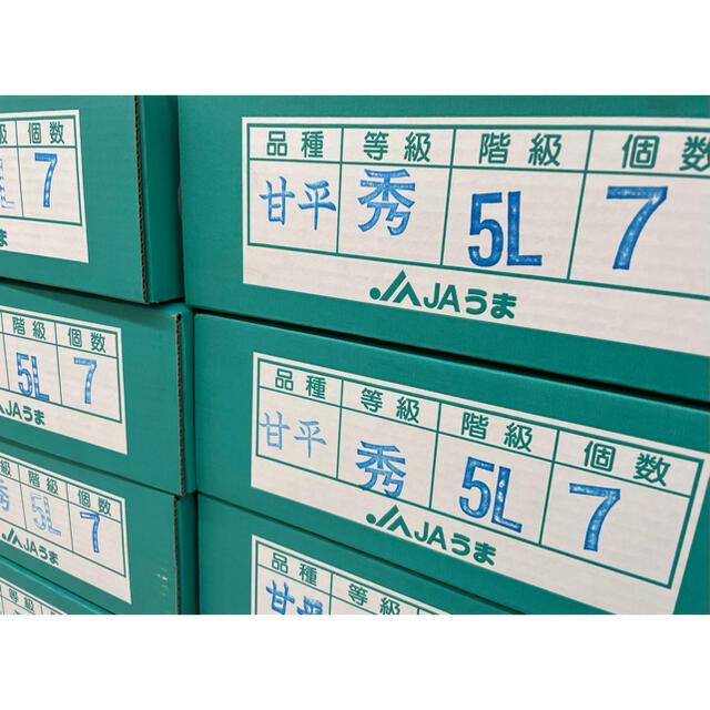 お買い得!!『JAうま』【甘平】青秀品 大玉5L(7玉) 3kg 食品/飲料/酒の食品(フルーツ)の商品写真