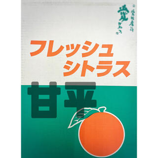 お買い得!!『JAうま』【甘平】青秀品 大玉5L(7玉) 3kg(フルーツ)