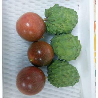 沖縄本島産 冬の人気No.1セット!アテモヤ、パッションフルーツ 2種 !(フルーツ)