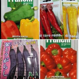 イタリア野菜の種など カラフルなピーマン パプリカ(その他)