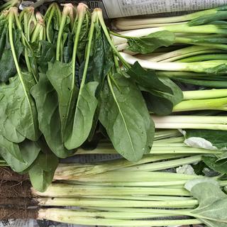 無農薬減農薬野菜セットと海鮮ウェイパー