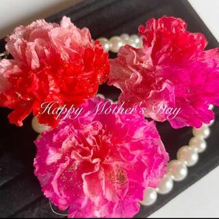 母の日花材 ミニカーネーション 3輪 ピンクアソート ハーバリウム花材(プリザーブドフラワー)