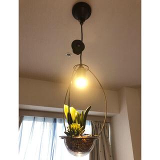 LED ペンダントライト シーリングライト  空気をきれいにするグリーン照明(天井照明)