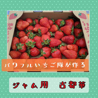 ジャム用いちご 奈良県産高級いちご【古都華】1kg(フルーツ)