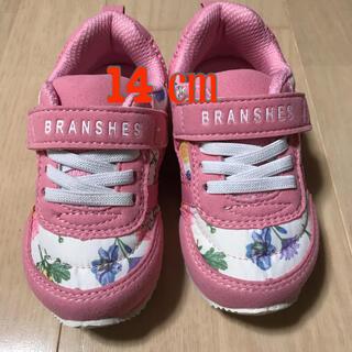 Branshes - ブランシェススニーカー14㎝