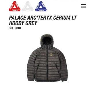 アークテリクス(ARC'TERYX)の【未使用品】Palace Arc'teryx Cerium LT Hoody(ダウンジャケット)