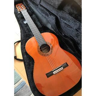 【新品同様】島村楽器 Frontere FGC-500C 杉 店頭販売中(クラシックギター)