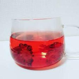 ロゼラティー お試し20g (茶)