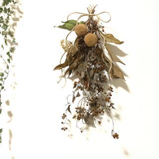 森のブラウンスワッグ ヘクソカズラと木の実 天然 素材 ナチュラル J(ドライフラワー)