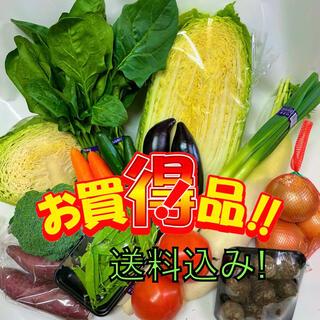 お買い得!新鮮野菜詰め合わせ80サイズ!