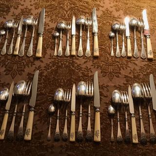 マイセン(MEISSEN)のCARDEILHAC カルディヤック 純銀/ルネサンス 44本セット(食器)