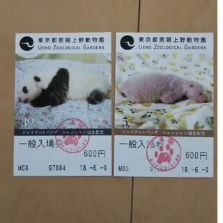 ジャイアントパンダ シャンシャン誕生記念 上野動物園入場券2枚