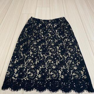 CELFORD レーススカート(ひざ丈スカート)