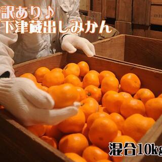 みかん10kg訳あり品(しもつ蔵出しみかん) 和歌山県から農園直送!(フルーツ)