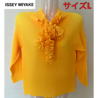 ISSEY MIYAKE - 美品!イッセイミヤケ 首元オシャレ♪トップス