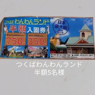 つくばわんわんランド 半額チケット(遊園地/テーマパーク)