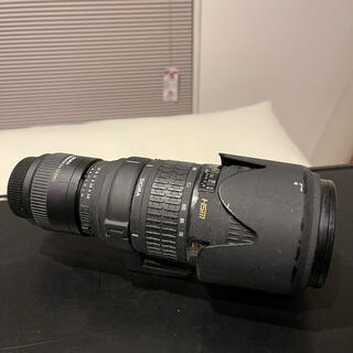 Nikon - SIGMA 70-200 2.8 APO HSM テレコンx2付き