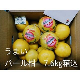 ★パール柑 7.6㎏箱込 フィルム巻き 産地直送 みかん シール付(フルーツ)