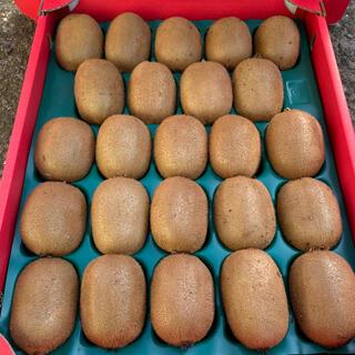 今期最終!芯が甘い!【高級品】和歌山県産キウイフルーツ 3L 24個入り(フルーツ)