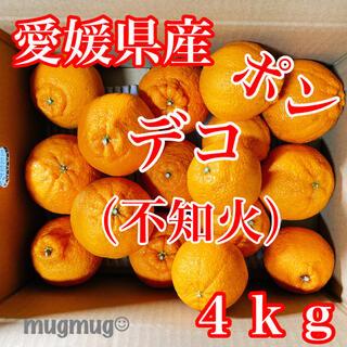 愛媛県産  完熟!デコ ( 不知火 )4kg《家庭用》(フルーツ)