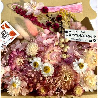 ハーバリウム花材 桜のタッセル付き(ドライフラワー)