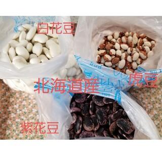 北海道産 令和2年の秋収穫した白花豆/虎豆/紫白豆セット(野菜)