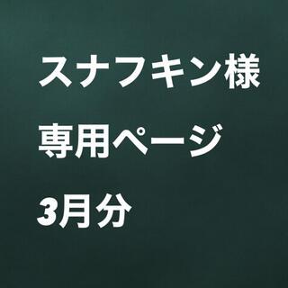 スナフキン様専用ページ 3月分