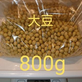 自家栽培  大豆 ( 里のほほえみ ) 800g 家庭用