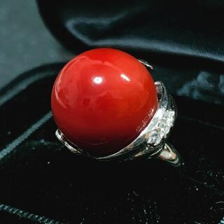 きれいな赤珊瑚 Pt900リング