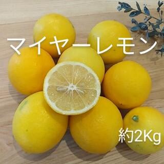 国産マイヤーレモン 約2Kg(フルーツ)