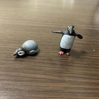 ペンギン 海 生物 ガチャ フィギュア☆他出品物とセットで割引!
