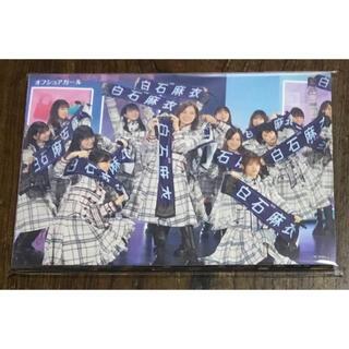 ポストカード 23枚 乃木坂46/Mai Shiraishi