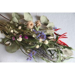 コットンフラワー2色とユーカリのスワッグロング花材(ドライフラワー)