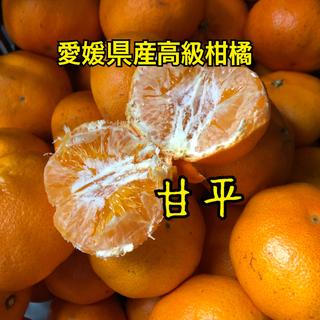 愛媛県産 高級柑橘 甘平 約5kg 大玉(フルーツ)