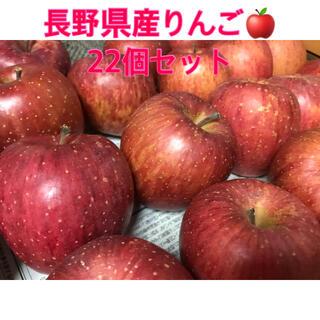 【3/9 23:59まで100円引き】長野県産りんご 22個セット 家庭用(フルーツ)
