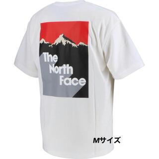 THE NORTH FACE - 【人気商品‼️】ノースフェイス ショートスリーブスノーマウンテンティー Mサイズ