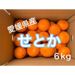 愛媛県産せとか6キロ(フルーツ)
