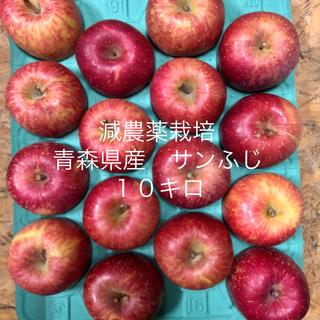 減農薬栽培*青森県産サンふじ10キロ 32個入り(フルーツ)
