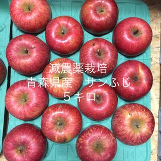 減農薬栽培*青森県産サンふじ5キロ 14個入り(フルーツ)