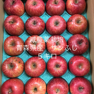 減農薬栽培*青森県産サンふじ5キロ 20個入り(フルーツ)