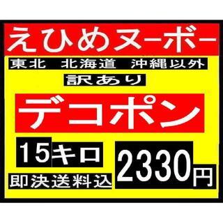 むじ♡様専用 えひめヌーボー 訳あり デコポン 15キロ(フルーツ)