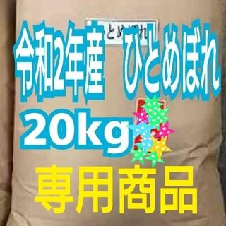 れもん様専用 精米済み ひとめぼれ 20kg(フルーツ)