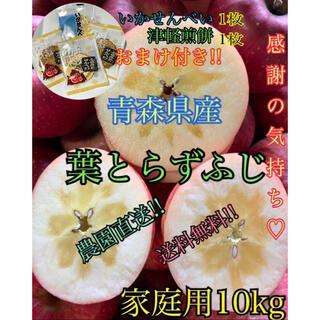 りんご おまけ付き!! 10kg前後 家庭用 葉とらずふじ 農園直送!!(フルーツ)