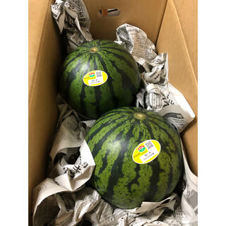 熊本県スイカ2玉入り 箱込み約8kg(フルーツ)