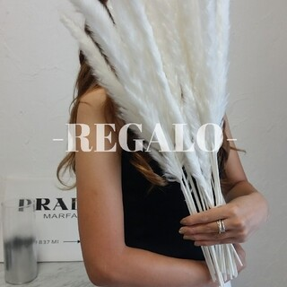 20本 ホワイト パンパスグラス ドライフラワー インテリア 花材 スワッグ(ドライフラワー)