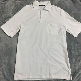 ロロピアーナ(LORO PIANA)のロロピアーナ ポロシャツ(ポロシャツ)